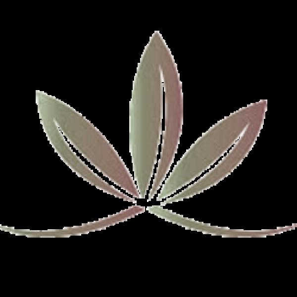 Best Naturals CoQ10 200 mg 60 Capsules